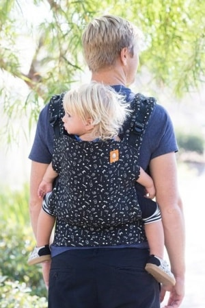 Tula baby carrier back carry